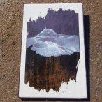 Création graphique d'Hervé Chassaniol, peintre contemporain
